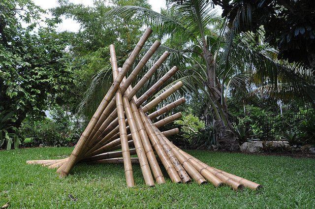 Guadua bamboo