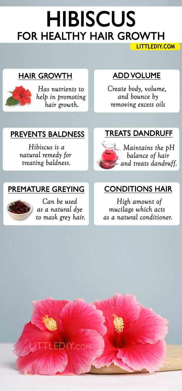 Hibiscus For Hair Growth Benefits And Ways To Use Little Diy Hair Growth Faster Hair Mask For Growth Hair Growth Diy