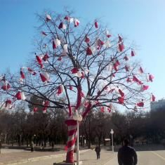 Martenitsa adorned tree...Stara Zagora