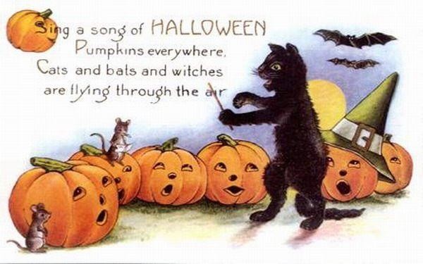 vintage-halloween-black-cat-singing-pumpkins-mice-postcard