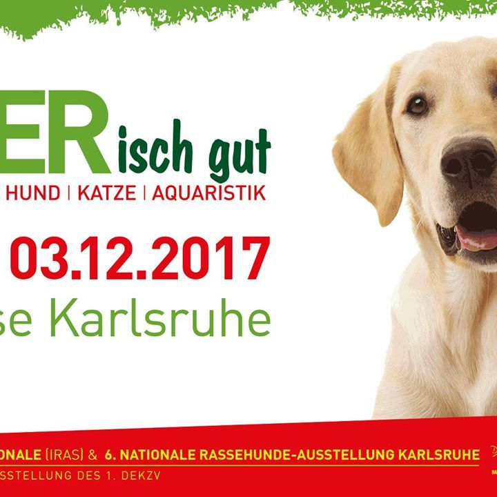 TIERisch gut - Messe Karlsruhe // 02.12.2017 - 03.12.2017 #PetOxy #ShippingWorldWide #Oxytocin'sDelivered #PetCareProducts