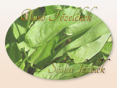 http://megoldaskapu.hu/olcso-fozelekek/soska-fozelek Sóska főzelék