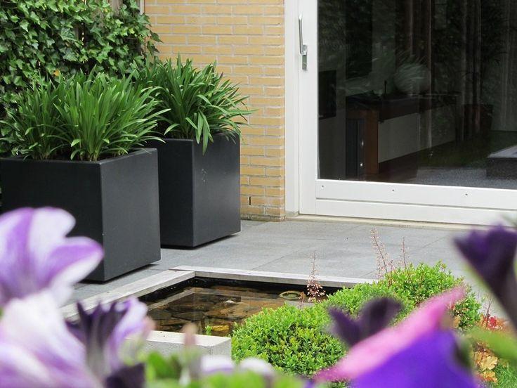 strakke-polyester-planten-bakken-afrikaanse-lelie-vijver-verlichting