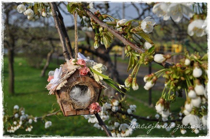 maciejkowe zacisze: Wiosenny domek