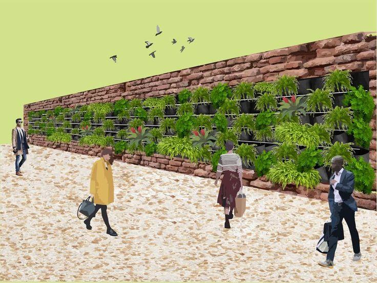 ♻ 📌Vols saber com es construeixen els jardins verticals a les ciutats? Fa aproximadament trenta anys el paisatgista francès Patrick Blanc es va convertir en pioner en la implantació de jardins verticals a París i posteriorment en altres ciutats del món. A través de la creació d'estructures verticals capaços de suportar i nodrir espècies vegetals, el sistema permet que la vegetació creixi i redueixi considerablement la temperatura en els interiors dels edificis quan s'instal·len a les…