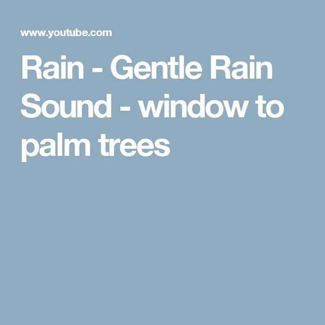 Rain - Gentle Rain Sound - window to palm trees