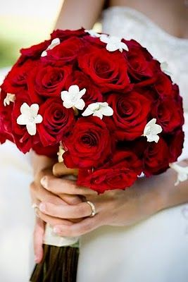 Valentine Wedding stephanotitis! That should be a close spelling. I love those flowers :) And red roses.