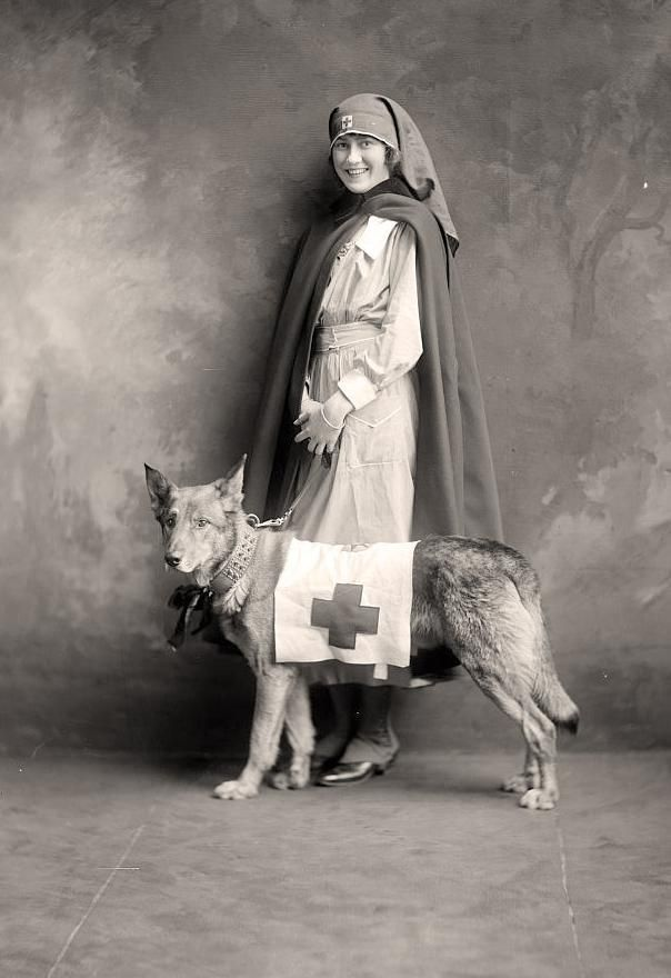 WWI Red Cross Nurse with Rescue Dog. (Dog was trained to locate wounded on the battlefield, and bark to call attention to them.)