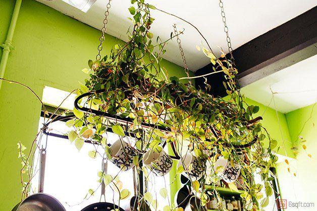 A modelo norte-americana Summer Rayne Oakes resolveu transformar seu loft, que fica no último andar de um prédio em Williamsburg, NovaYork,em uma verdadeira floresta particular. Formada em biologia e entomologia, Summer, que também é escritora, cozinheira e ativista conhecida no mundo da moda, mantém mais de 500 plantas de 150 espécies no espaço de 111m². A modelo costumava encarar sua residência como uma espécie de refúgio sagrado mas, após a transformação do local, ela decidiu abrir as…