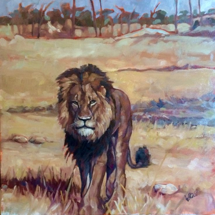 """Cecil. a tribute. Oil on canvas 16"""" x 16"""" Not just for Cecil, but for all animals and humans who are trafficked, poached, trophy hunted and otherwise enslaved for some (usually wealthy) person's self-entitled financial or egotistical gain.  #bantrophyhunting #animalrights #humanrights #Cecil #Cecilthelion #poaching #trafficking"""