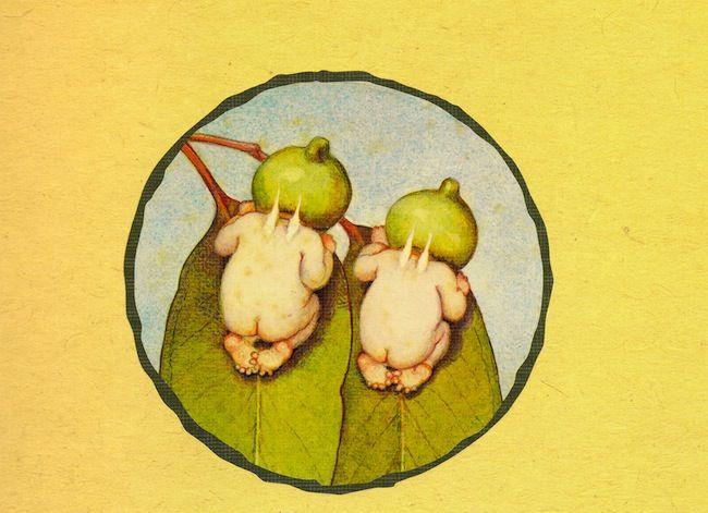 AUSTRALIANA May Gibbs Gum nut babies - 'Snugglepot and Cuddlepie'