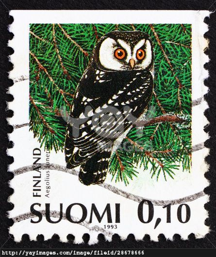 Finlandia 1993-Lechuza de Tengmalm,