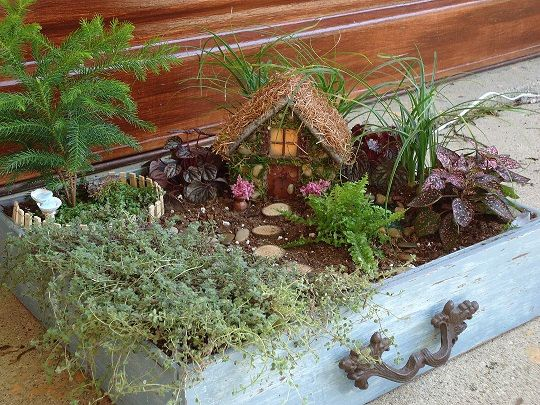 Full fairy container garden container garden fairies and fairies garden - Fairy garden containers ...