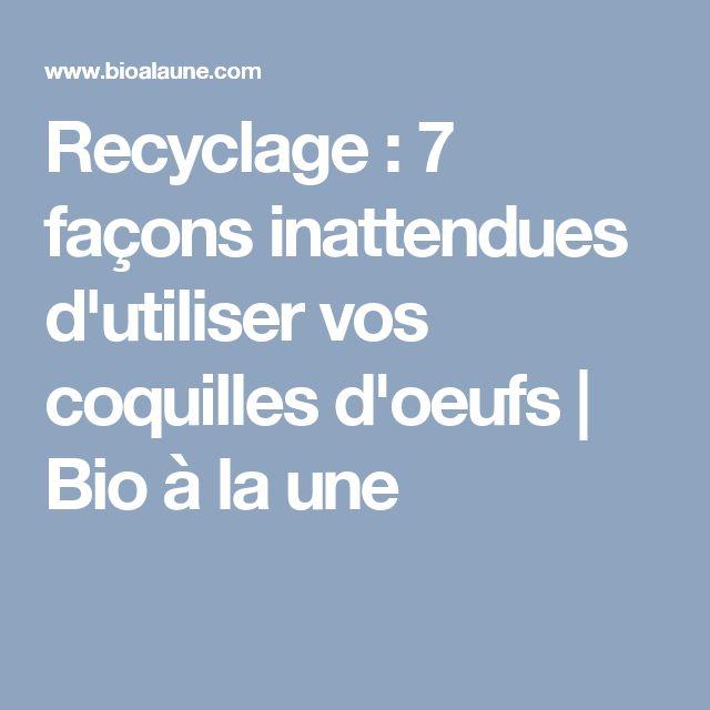 Recyclage : 7 façons inattendues d'utiliser vos coquilles d'oeufs | Bio à la une