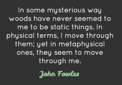 Metaphysical Quotes | ... through them; yet in metaphysical ones, they seem to move through me