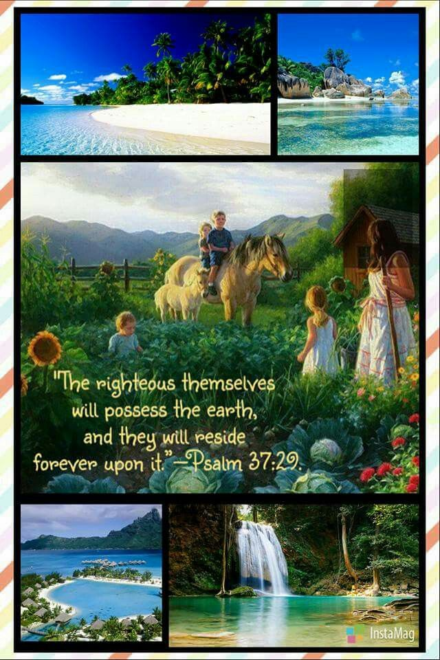 Psalm 37;18, ''Jehovah is aware of what the blameless go through, And their inheritance will last forever.''