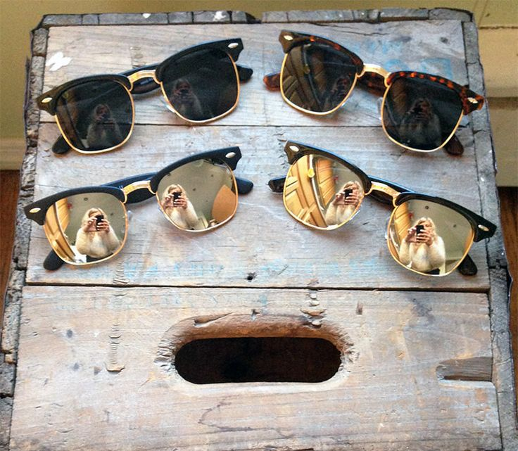 Plastic shiny black retro clubmaster sunglasses with super dark lenses. Gold bridge and accents. Double arrow gold emblem on each corner. 100% UVA/UVB protection.