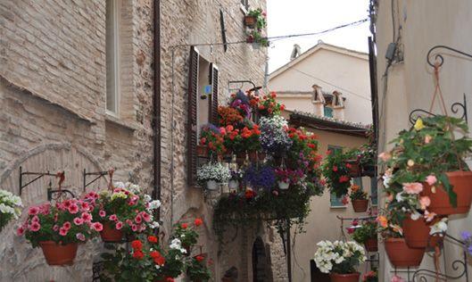 Spello (Pg) Umbria