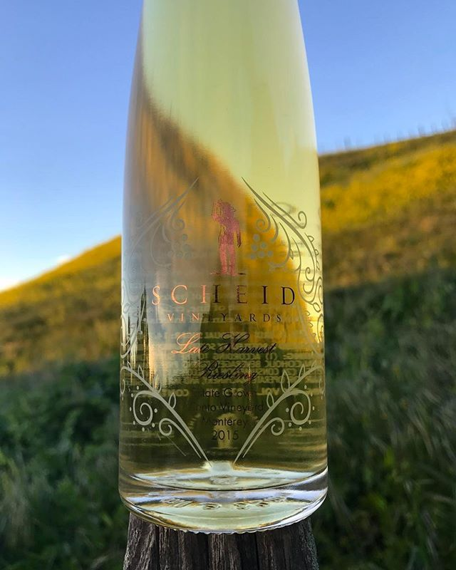 "Tasting Room Manager Scott Tidd is hosting our first ""Tidd-bit Tuesday"" on April 11 from 4:30-6:30 in the Carmel Tasting Room. We are releasing our 2015 Late Harvest Riesling, showcased in an Isabelle sparkling wine ""cocktail!"" Need we say more? #newrelease #wine #scheidvineyards #lateharvest #riesling #dessertwine #sparklingwine #montereywines #carmelbythesea #montereylocals - posted by Scheid Vineyards https://www.instagram.com/scheid_vineyards. See more of Carmel By The Sea, CA at…"