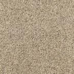 Carpet Sample - Courtlyn I - Color Beachfront Texture 8 in. x 8 in., Beige/Ivory