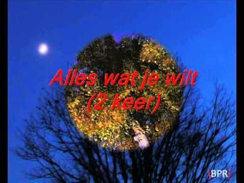 nummer: alles wat je wilt artiest: elly en rikkert cd: witte zwanen zwarte zwanen wil je deze foto's ook hebben? ga dan naar: BPRofficieel.weebly.com