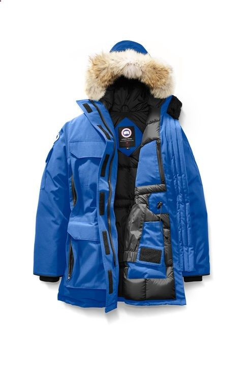 Womens Polar Bears International PBI Expedition Parka | Canada Goose®