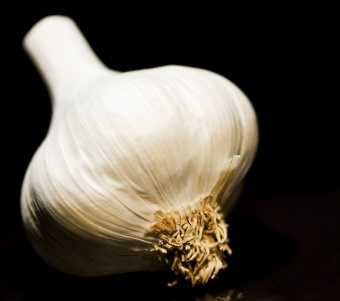 Use Of Garlic Le Janae - New Posts