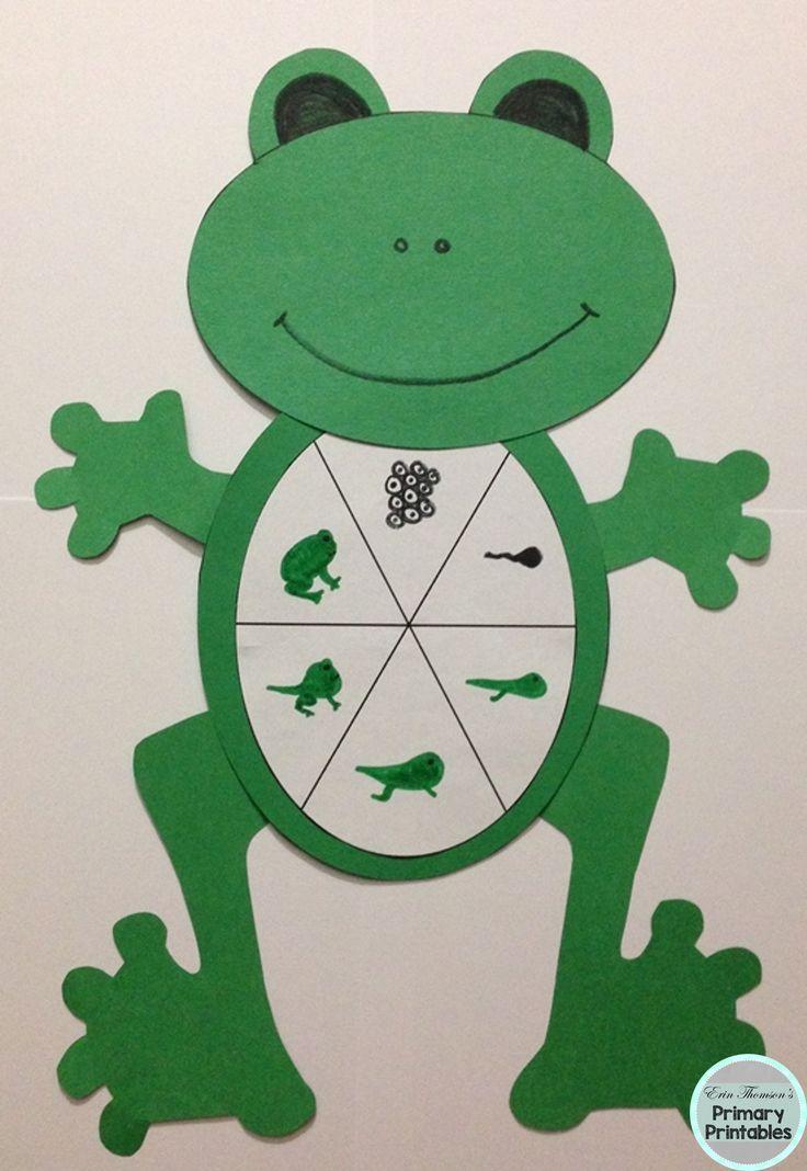 Frog Life Cycle Craft ~ frog spawn, tadpole, froglet, frog