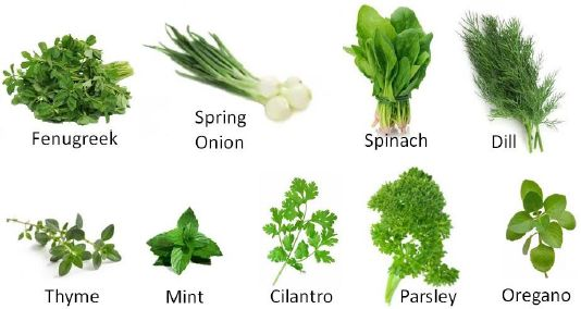vegetables used for salad