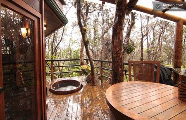 A view from the Deck of this Tree House.