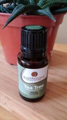 15 Incredible Things You Can Do With Tea Tree Oil