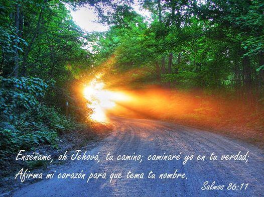 """""""Enséñame, Señor, tu camino, y caminaré yo en tu verdad; afirma mi corazón para que tema tu nombre"""". Salmos 86.11"""