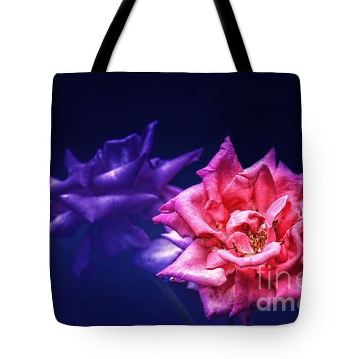 "Two Roses Tote Bag 18"" x 18"""