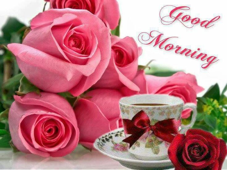 Good Morning Beautiful Pink Roses : Good morning enjoy your coffee my friends