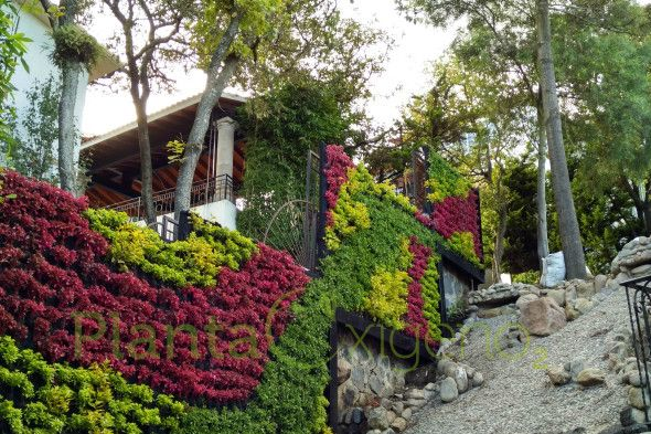 Jard n vertical residencial sistema de riego escalonado for Sistema de riego jardin vertical