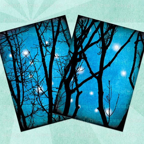 NOVEMBER SKY Digital Collage Sheet - no. 0204, $3.99 :: Bare branches against starry blue skies. Image print size is 2.5x3.5in. From Rowan Tree Design on Etsy.