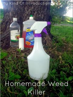 My Kind Of Introduction: Homemade Weed Killer Recipes