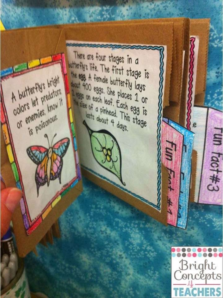Life Cycles of Butterflies,Frogs & Plants (Activities, Paper Bag Books & Crafts)