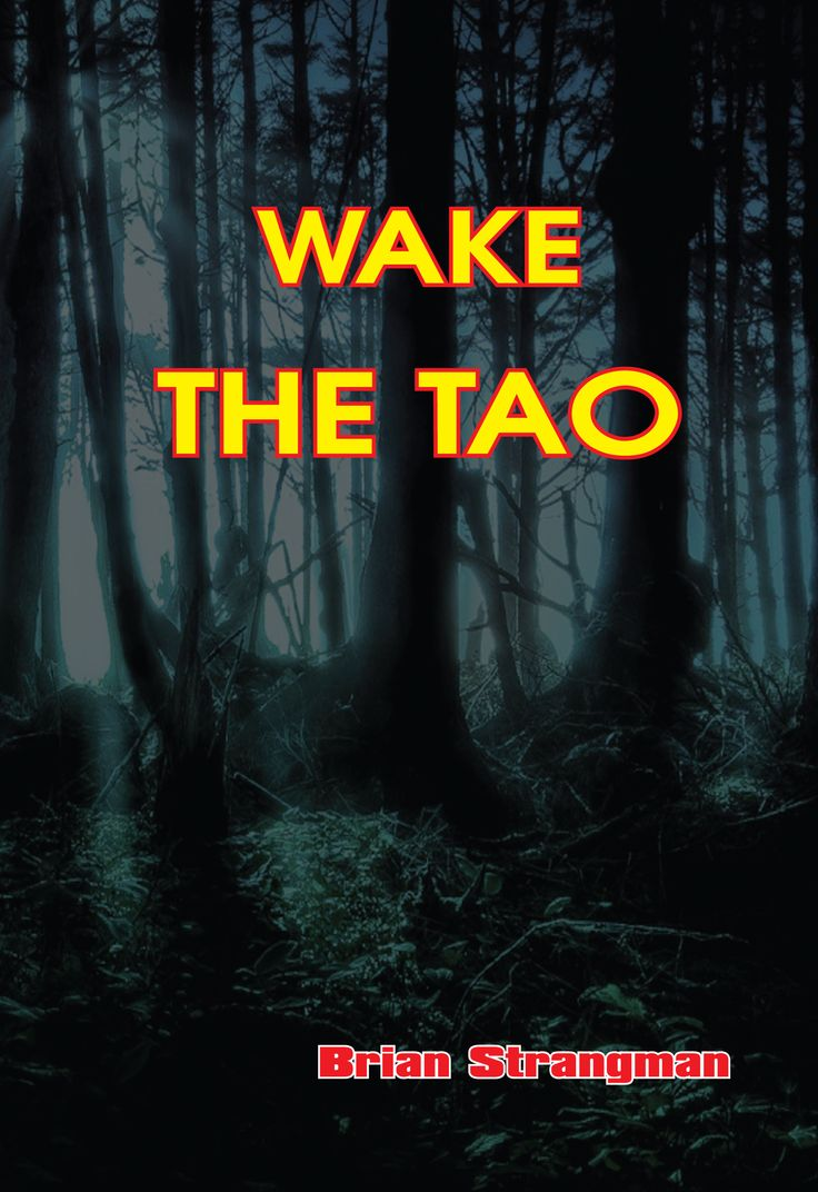 Wake the Tao is one of three books from Australian author, Brian Strangman published with assistance from Love of Books. http://www.jackballantyne.com/