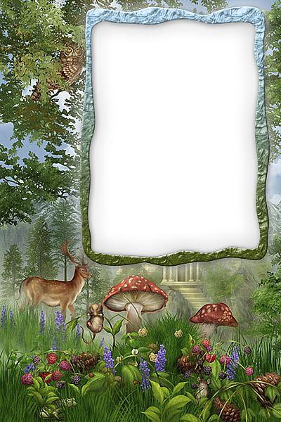 Transparent Forest Frame.