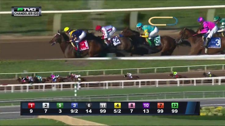 RACE REPLAY: 2016 Chandelier Stakes Featuring Noted and Quoted - Horse Racing News videos