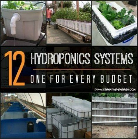 12 Hydroponics System Designs   Growing plants using a hydroponics system is an easy way to be self sufficient and to ensure an assortment of organic food.