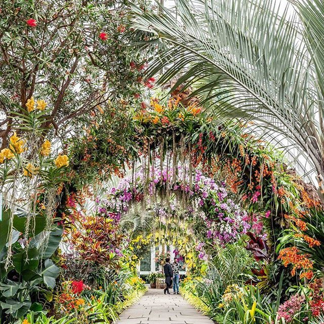 New York Botanical Garden Nybg Instagram Photos And Videos