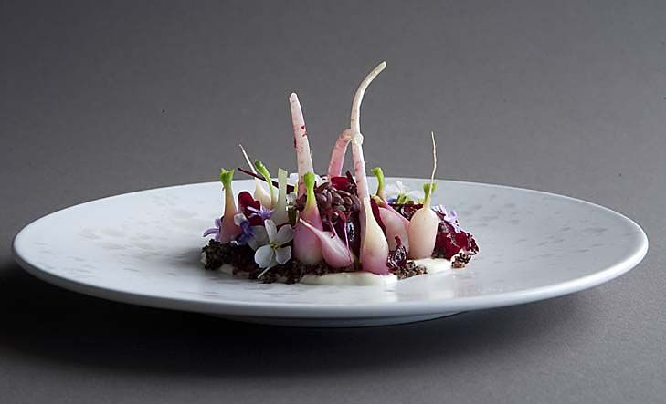 pink turnips, pickled beetroot, breakfast radishes, goat's curd, olive crumbs, sweet violets, chard, pine resin and balsamico