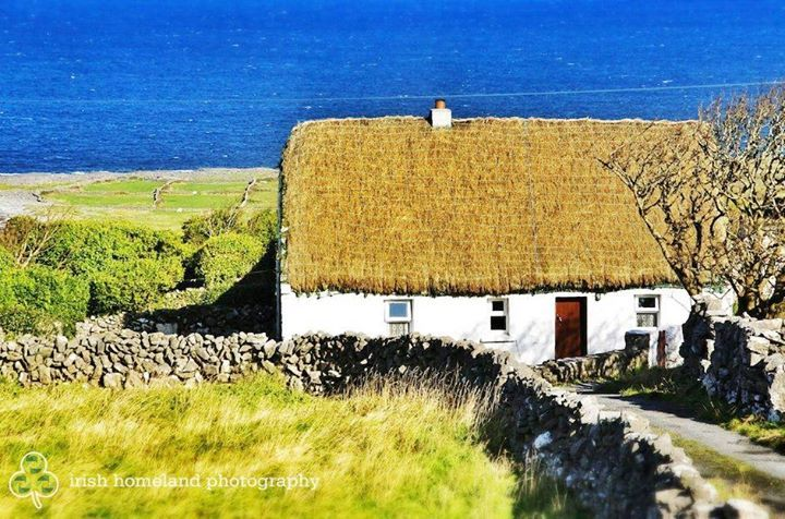 17 best images about irish cottage renovation on pinterest for Garden design galway
