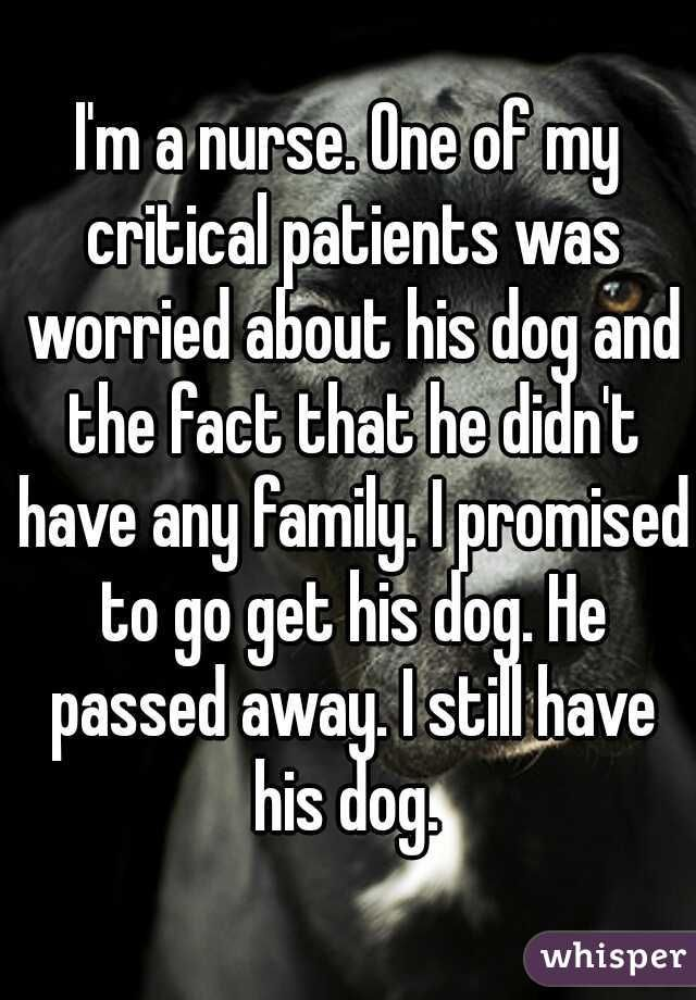 I'm a nurse. One of my critical patients was worried about his dog and the fact that he didn't have any family. I promised to go get his dog. He passed away. I still have his dog.