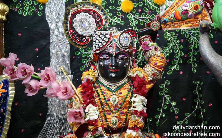 To view Gopal Close Up Wallpaper of ISKCON Chowpatty in difference sizes visit - http://harekrishnawallpapers.com/sri-gopal-close-up-wallpaper-003/