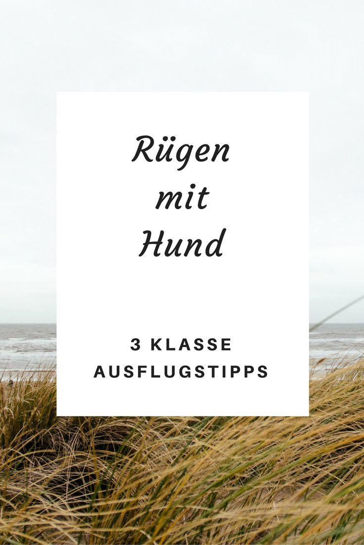 3 fantastische selbsterprobte Ausflugstipps für Rügen mit Hund!