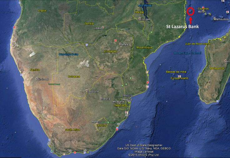 St Lazarus Bank (top right of Moz) Strategy & Fishing Expedition - monster fish - master business strategy session with lifemasters.co.za