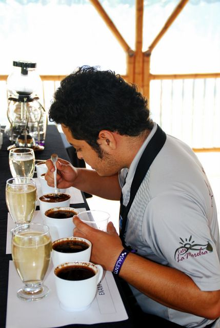 Day 167:  Sebastian and his highly-trained taste buds, Cafe la Morelia, Zona Cafetera (Colombia)